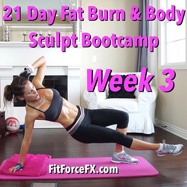 The schedule for WEEK 3 of your 21 day body transformation is now up on the FitForceFX YouTube channel! You guys are almost there and I'm so impressed by your hard work and dedication! I'm loving all your workout check-in posts!  If you haven't already joined in on the sweat-fest, it's never too late. Just go to the Week 1 schedule for the 21 Day Fat Burn & Body Sculpt Bootcamp and you can get started anytime! This bootcamp is full of fun & effective workouts, specifically designed for weight loss and body sculpting. It's graded for all levels, from beginner to advanced, and for all time constraints.  Don't forget to comment below and check-in with me throughout the week to let me know how it's going or if you have any questions! Tag me in your sweaty bootcamp survival posts! I can't wait to see your progress and cheer you on!  Join me on Facebook, Instagram & Pinterest for fitness & nutrition tips, healthy comfort food hack recipes, and other fun stuff!  Train. Nourish. Transform.  Fit Wear: 👚@marika_clothing 👖@rbxactive 👟@Nike  #bootcamp